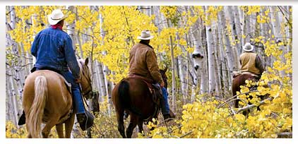 contentPhoto-ridingaspens