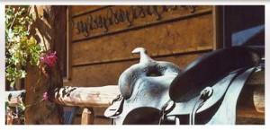 contentPhoto-saddle