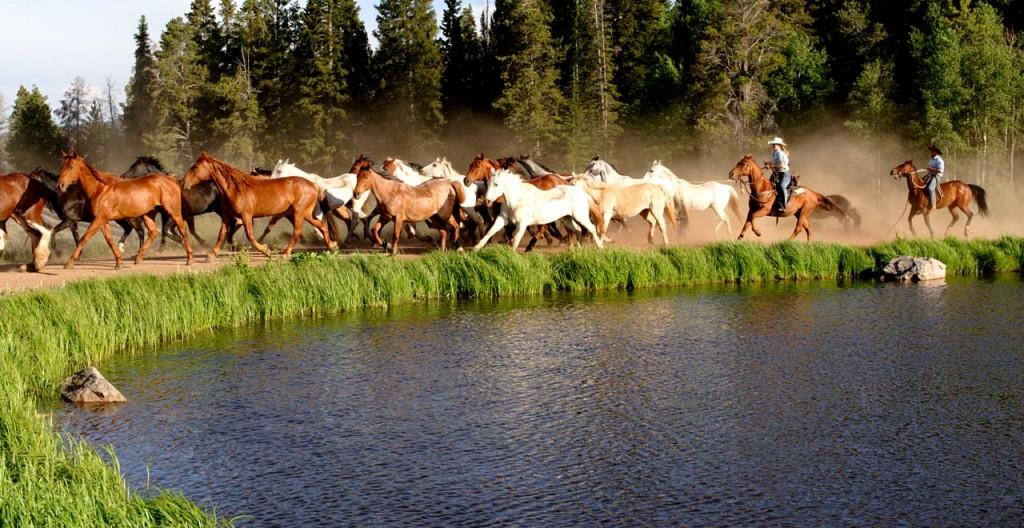Dude Ranch Vacations - Colorado Dude & Guest Ranch