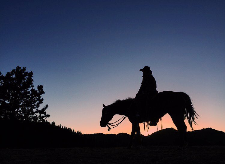 horse-sunset-cherokee-park.jpg