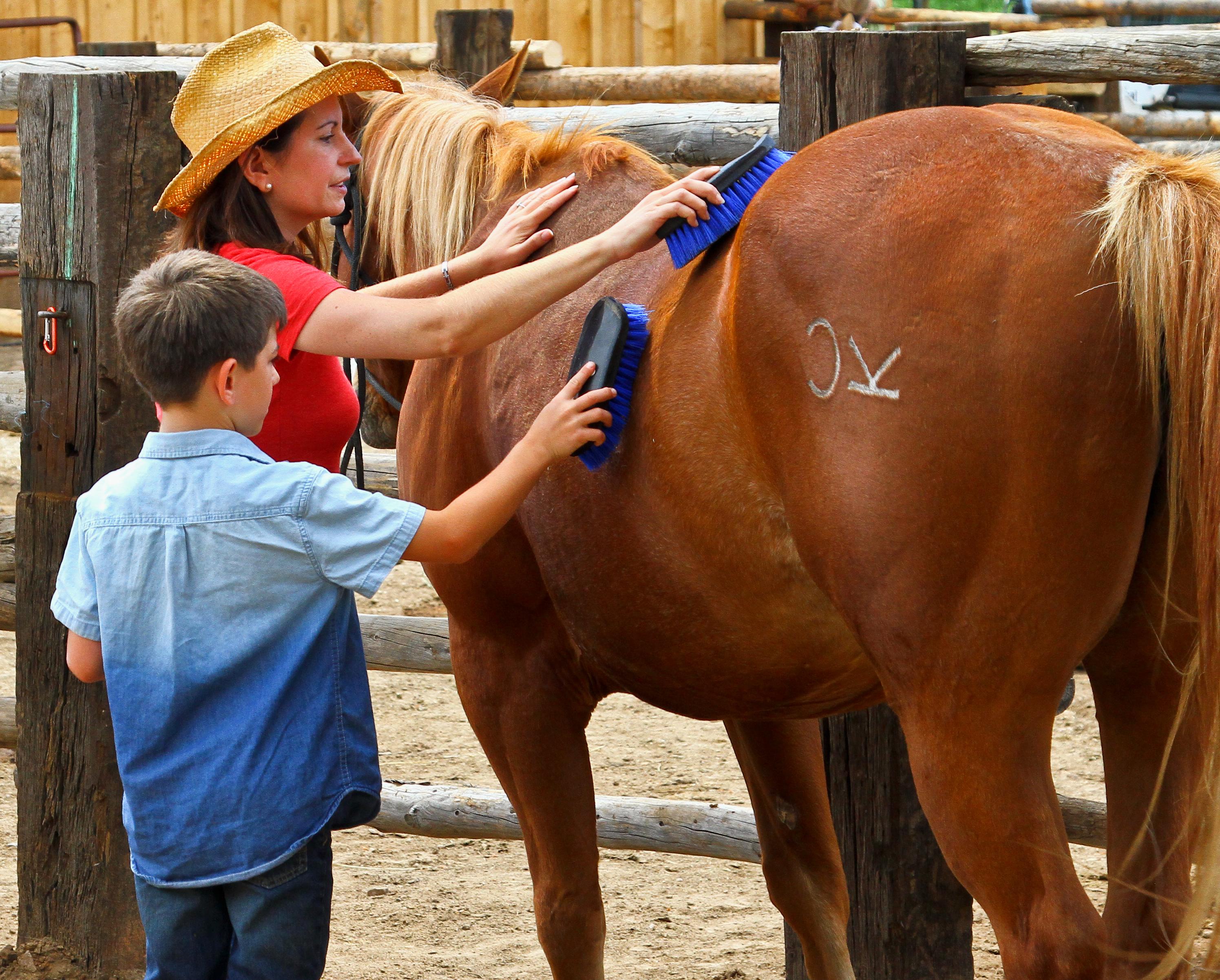 brushing-horses-cherokee-park.jpg