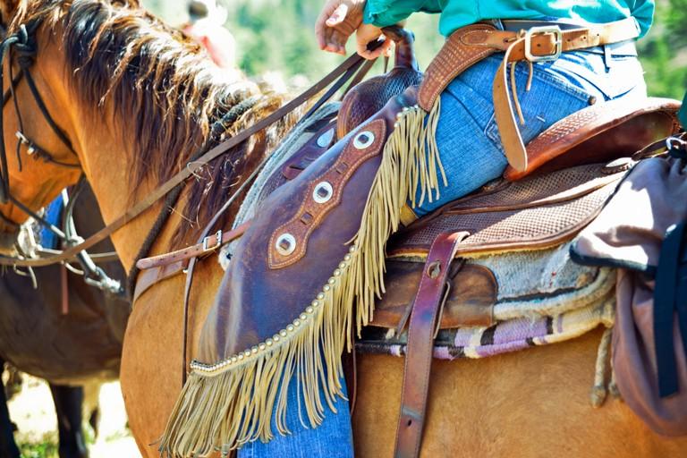 horse-saddle-cherokee-park.jpg