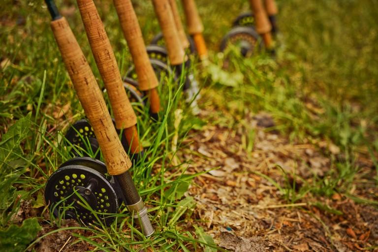 fishing-poles-cherokee-park.jpg