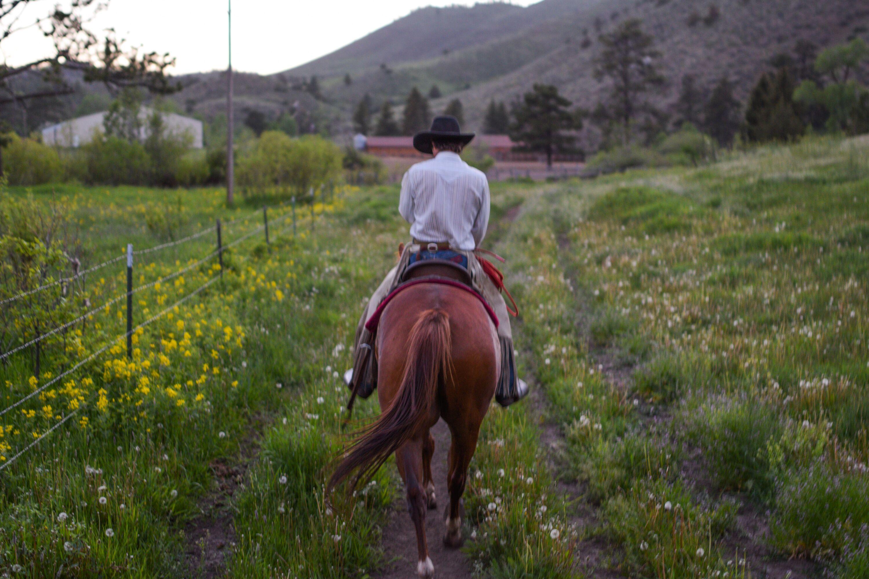 Wilderness Horseback Riding