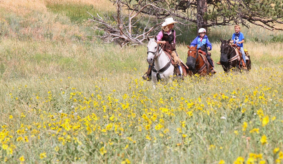 horseback-riding0meadow-cherokee.jpg