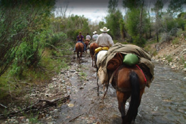 horse-riding-in-creek.jpg