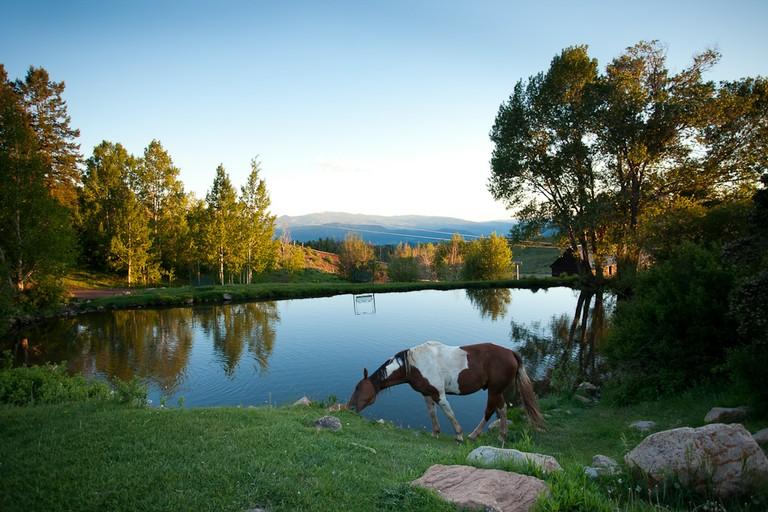 Black Mountain Colorado Dude Ranch