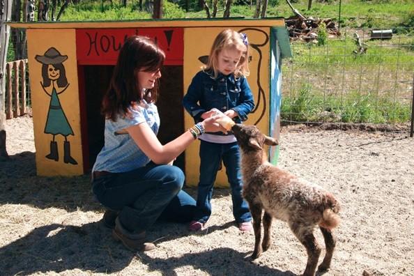 feeding-baby-goat.jpg