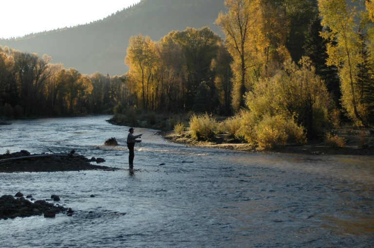 fly-fishing-rainbow-trout.jpg