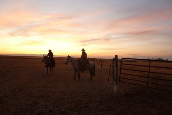 sunset-and-horses-zapata.jpg