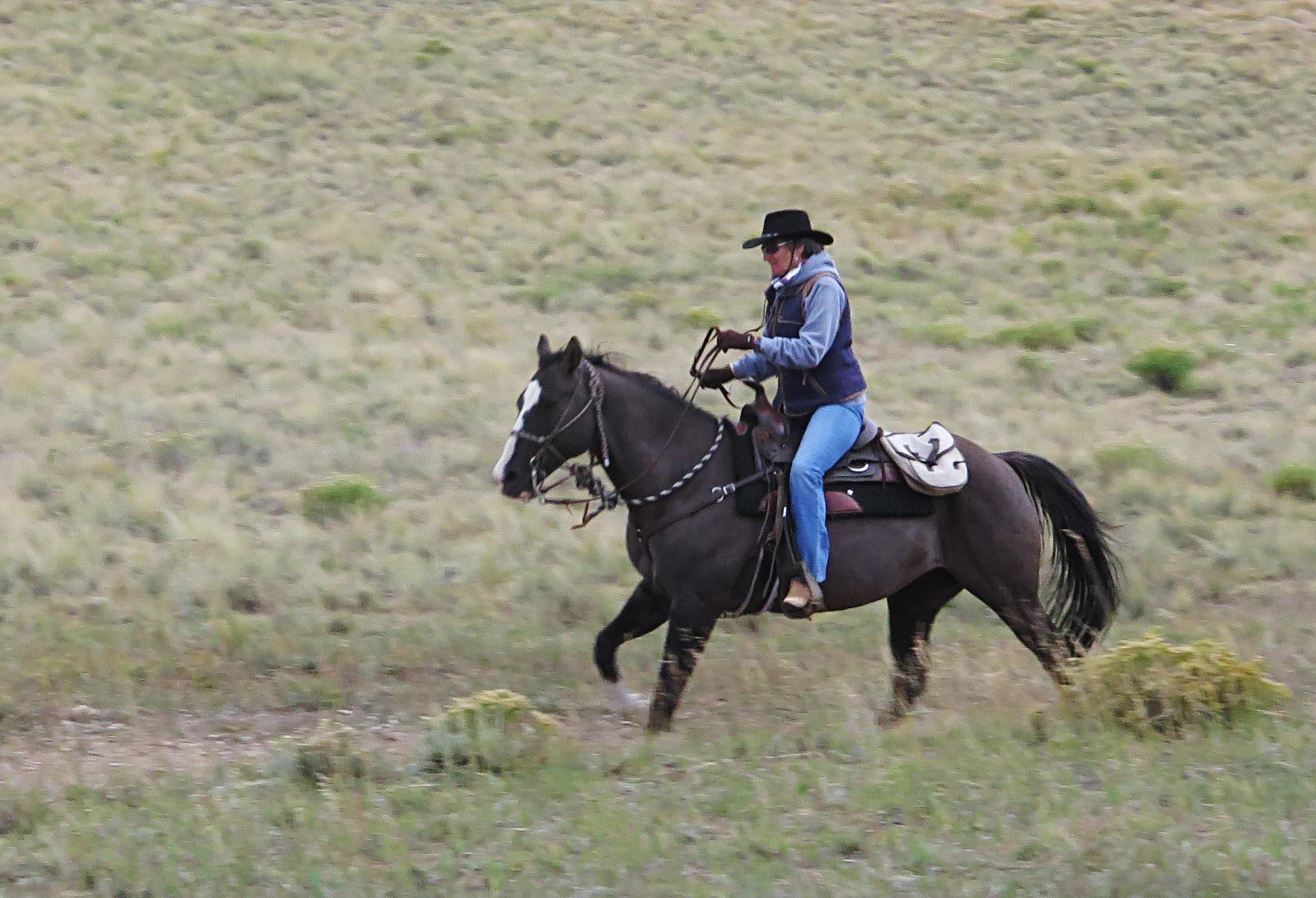 man-riding-horse.jpg