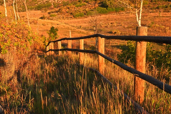 sunset-fence.jpg