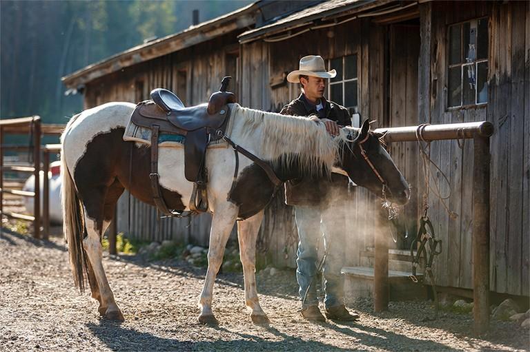 horse-tending.jpg