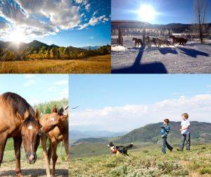 Planning Your Vacation Colorado Dude Ranch Association